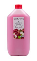 Cherry liquid soap with aloe 5L